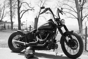 Black and White Harley